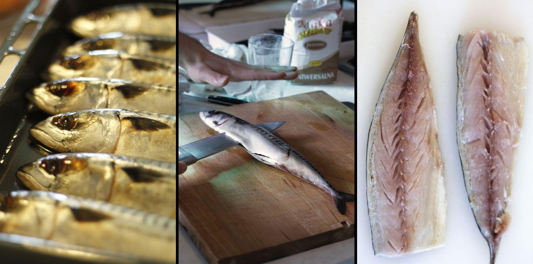 filetowanie makreli