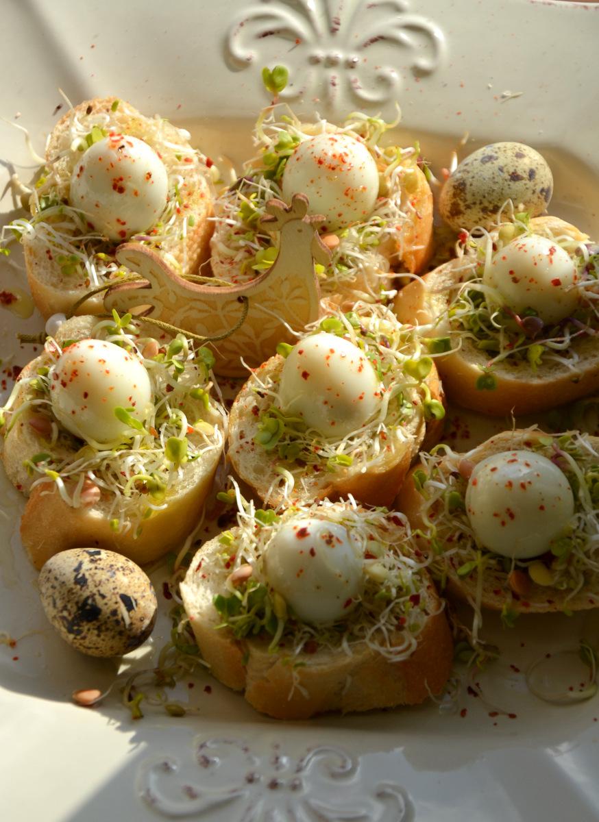 Jajka Przepiorcze W Gniazdach Kuchnia W Formie