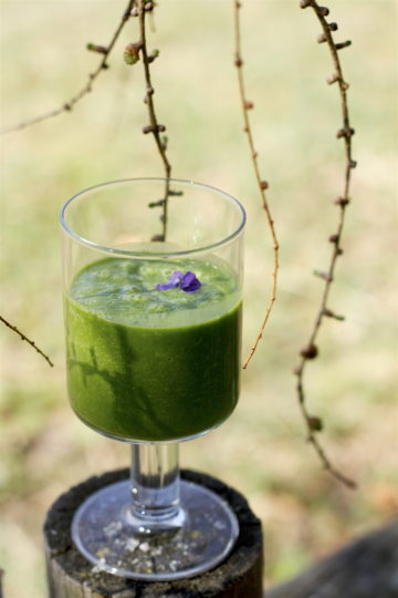 Zielony koktajl ze szpinakiem i awokado